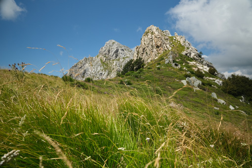 Mountain meadow. Clouds on top of a mountain in the Apuan Alps in Tuscany. Stock photos. - MyVideoimage.com | Foto stock & Video footage