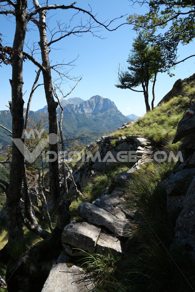 Mountain trail on the Apuan Alps. This is the path that leads from Cervaiole to Passo del Vaso Tondo. - MyVideoimage.com | Foto stock & Video footage