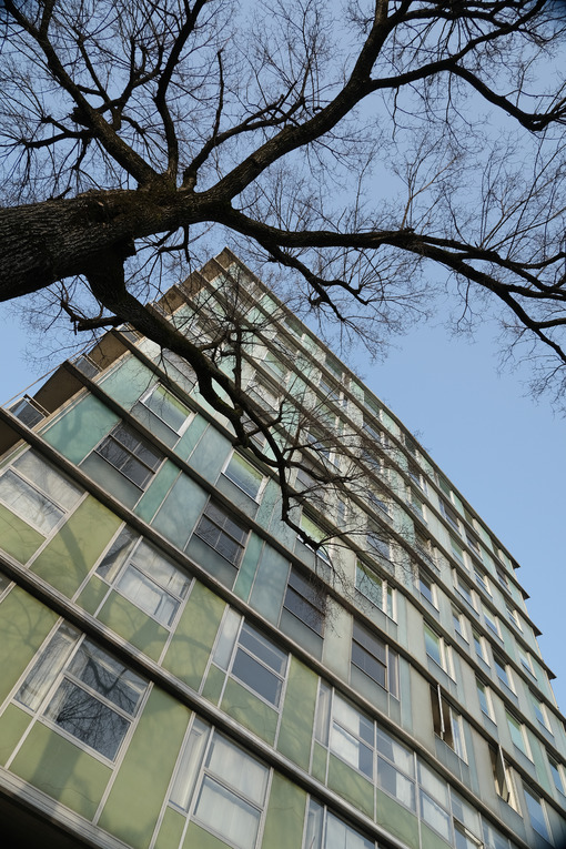 Old glass facade. Front of a building from the 60s-70s of the twentieth century with an aluminum and glass facade and a tree without leaves. - MyVideoimage.com | Foto stock & Video footage