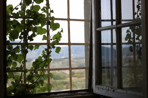 Old window with Tuscan landscape near Florence. A climbing plant on the railing. - MyVideoimage.com
