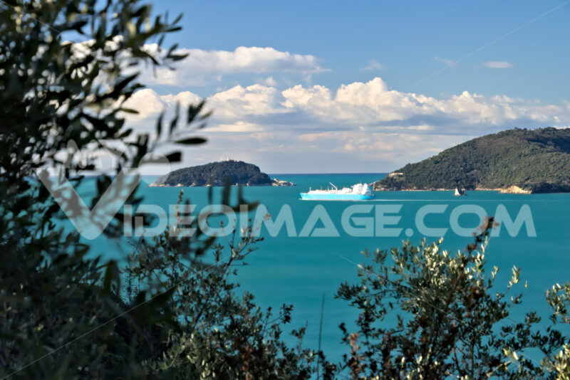 Olive grove and garden with sea view. Navi - MyVideoimage.com | Foto stock & Video footage