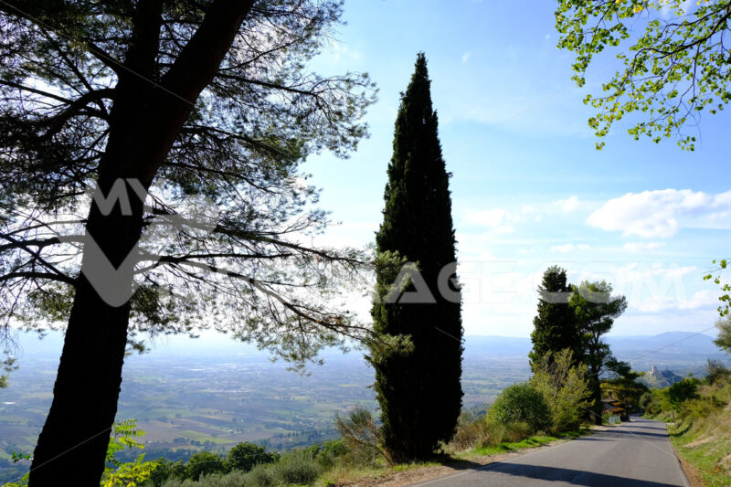Panorama of the Assisi countryside with the road leading to the Hermitage of the Carceri used by St. Francis for prayers. - LEphotoart.com