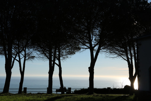 Panorama of the Cinque Terre sea seen from the hill of the sanctuary of Soviore. Silouette of pines and deu people sitting on a bench. - MyVideimage.com