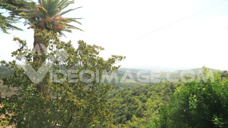 Panoramic view of the Tuscan hills. The cultivated land and tree - MyVideoimage.com
