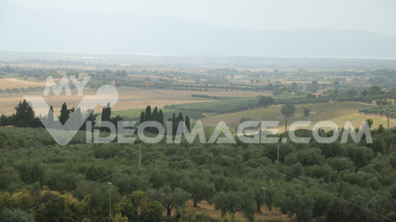 Panoramic view of the Tuscan hills. Vineyards for wine productio - MyVideoimage.com | Foto stock & Video footage