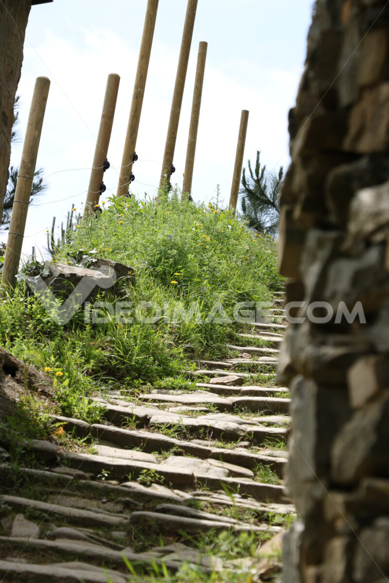 Path on the hills of the Cinque Terre used to reach the vineyards. - LEphotoart.com