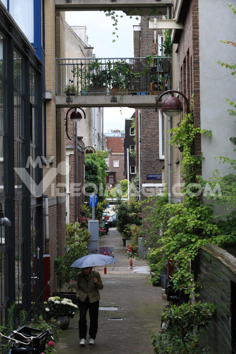 Pedestrian street with houses and climbing plants. A woman with - MyVideoimage.com | Foto stock & Video footage