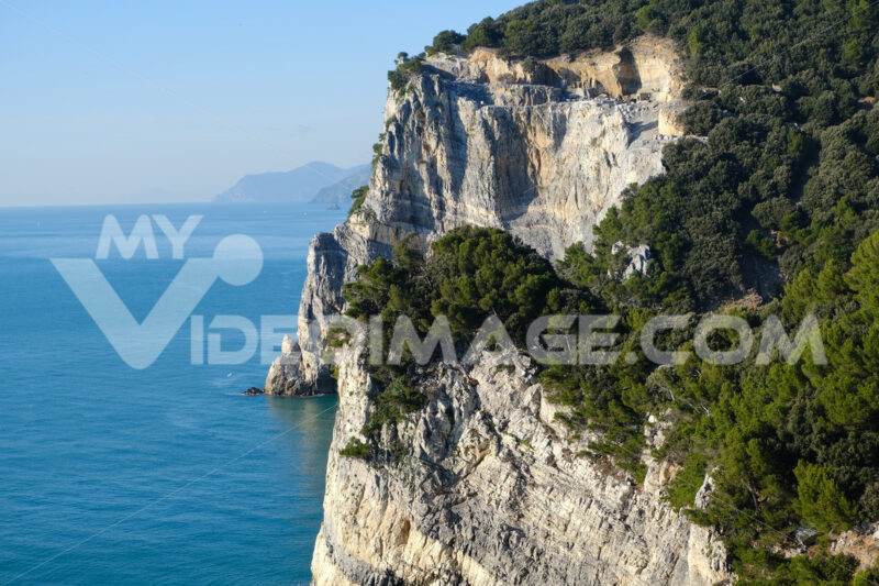 Pine trees overhanging the rocks on the island of Palmaria near Portovenere and the Cinque Terre. - MyVideoimage.com