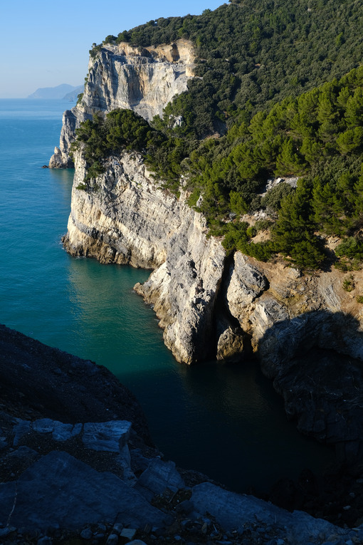 Pine trees overhanging the rocks on the island of Palmaria near Portovenere. Sea pictures. - LEphotoart.com