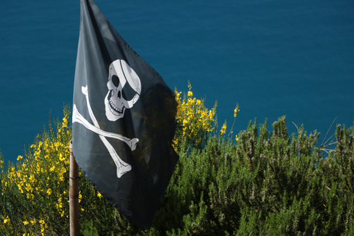 Pirate flag hoisted on the hills of the Cinque Terre in Liguria. In the background the sea. - MyVideoimage.com