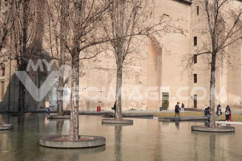 Poplar trees in a tub of water. In the background the Palazzo della Pilotta in Parma. - MyVideoimage.com