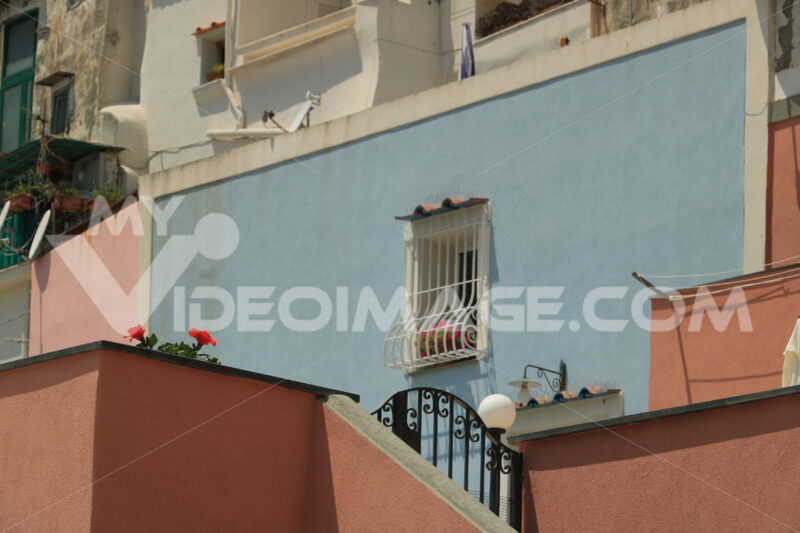 Red flower. Red flowers against the backdrop of building facades in the Medi - MyVideoimage.com   Foto stock & Video footage