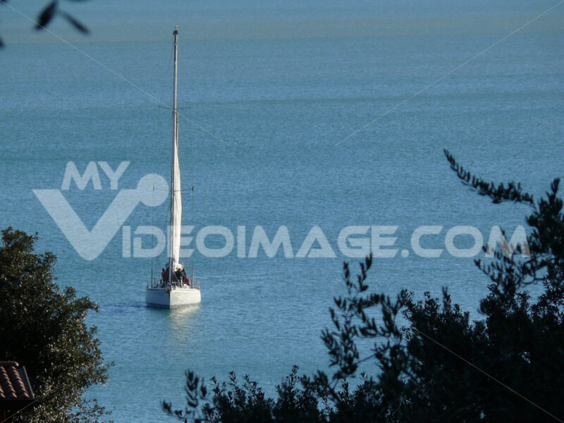 Sailboat near the coast seen from above among branches and leaves of trees. - MyVideoimage.com