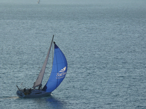 Sailboat runs on the sea with the wind in its sails and the swollen blue spinnaker. - MyVideoimage.com