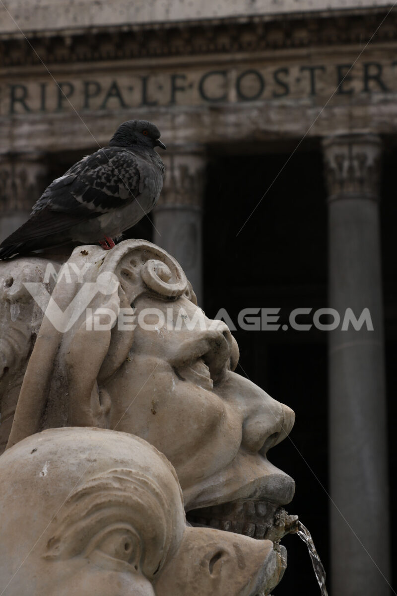 Sculpture with marble fountain in Piazza del Pantheon in Rome. - MyVideoimage.com