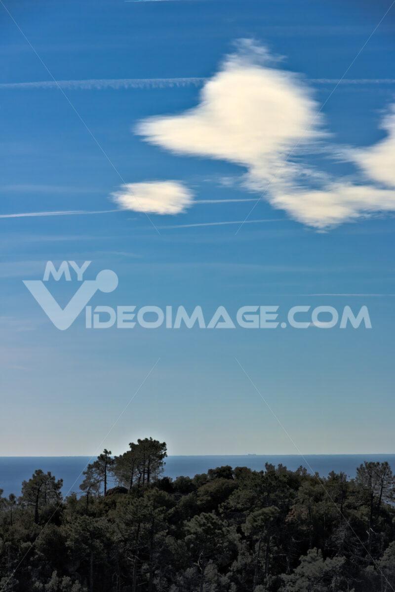 Sea panorama of the Cinque Terre. Trees, sea, sky in a panorama of the Cinque Terre. Monte grosso. (Province of La Spezia) - LEphotoart.com