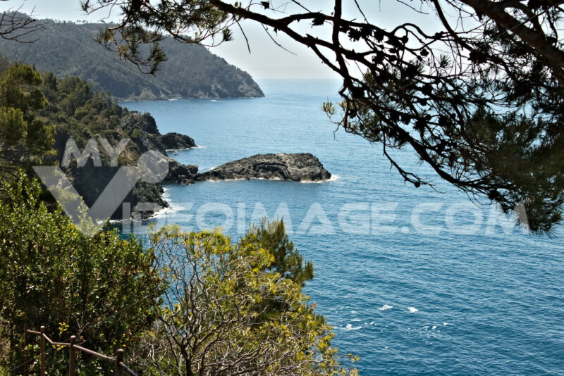 Seascape near the Cinque Terre, in Liguria, Framura, Italy. A blue sea with sheer mountains. Mediterranean trees and vegetation. - MyVideimage.com