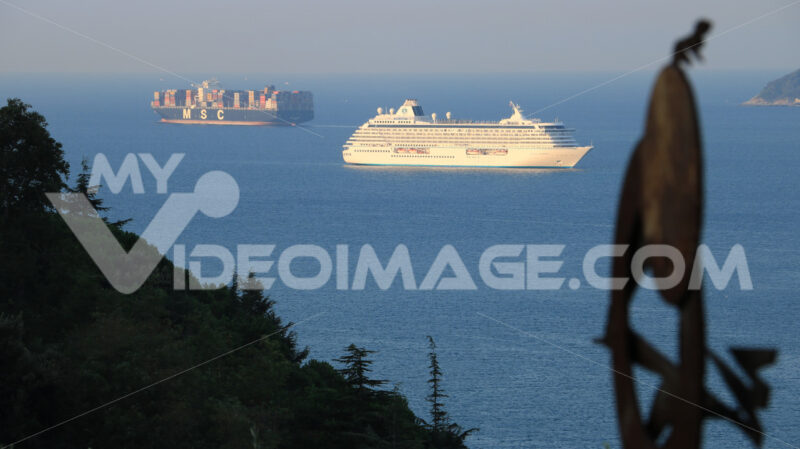 Serenity cruise ship and MSC container ship with olive leaves and sculpture.The Gulf in the Mediterranean Sea with Islands in the background light of dawn. - MyVideoimage.com | Foto stock & Video footage