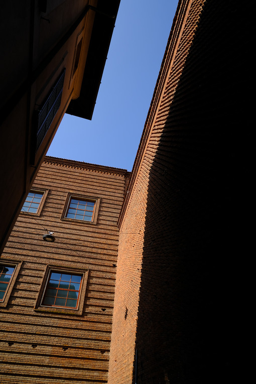 Shadow on the wall. Brick wall of a museum.  Stock photos. - MyVideoimage.com | Foto stock & Video footage