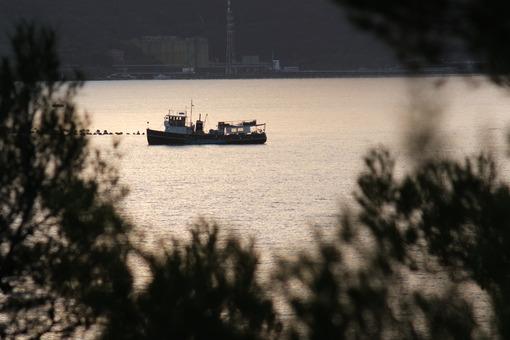 Ship in the sea of La Spezia, Liguria. Plants overlooking the sea near the Cinque Terre. - MyVideoimage.com