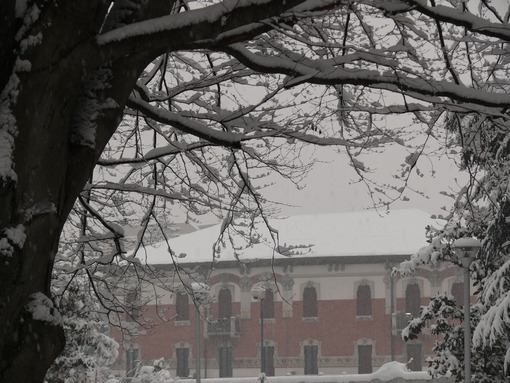 Snowfall in the city of Busto Arsizio. - MyVideoimage.com