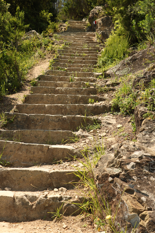 Stairway of a path to the Cinque Terre, between Monterosso and Levanto. - MyVideimage.com