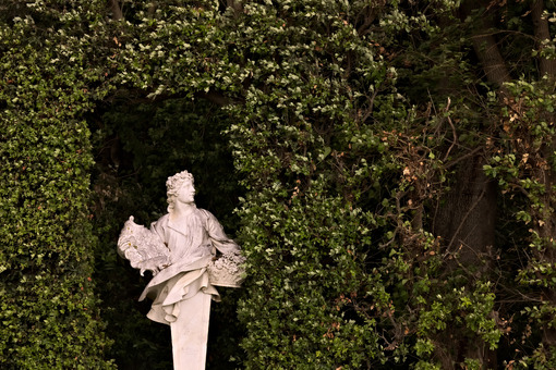 Statue in marble. Reggia di Caserta, Italy. 10/27/2018.Statue in white marble placed in the park of the palace. - MyVideoimage.com | Foto stock & Video footage