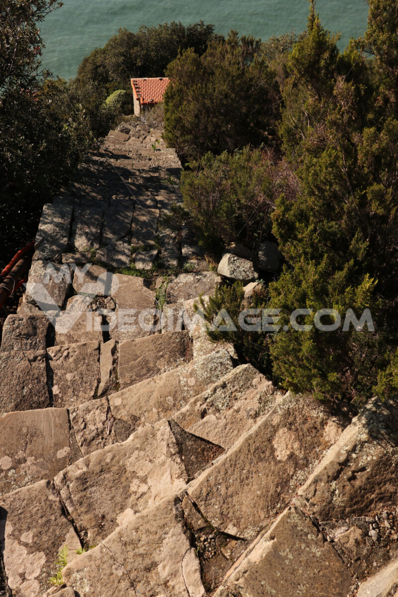 Steep stairway of a path that leads to the village of Monesteroli near the Cinque Terre. - MyVideoimage.com