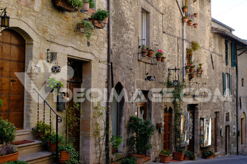 Street of the city of Assisi with typical old stone and brick houses. Facades, doors and windows are decorated with flower pot plants - MyVideoimage.com
