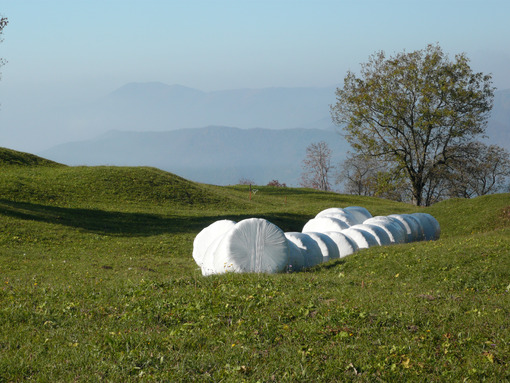 Surreal landscape. Countryside with trees, lawn and parcels covered in white plastic. - MyVideoimage.com