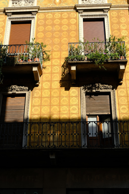 Terrace plants. Ancient facade with balconies and decorations. Stock photos. - MyVideoimage.com | Foto stock & Video footage