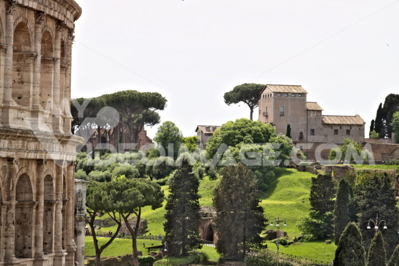 The Palatine Hill is in the foreground a detail of the Colosseum. The hill is a large open-air museum of ancient Rome. Pictured meadows and green trees - LEphotoart.com