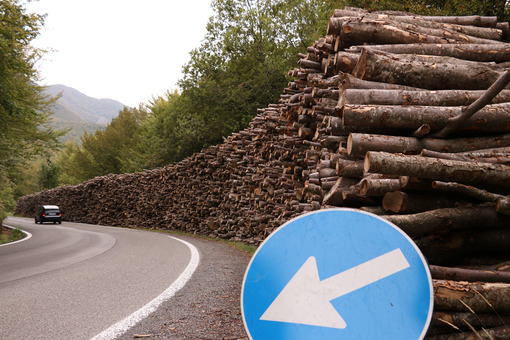 Timber wall stacked along a road where a car passes. - MyVideoimage.com