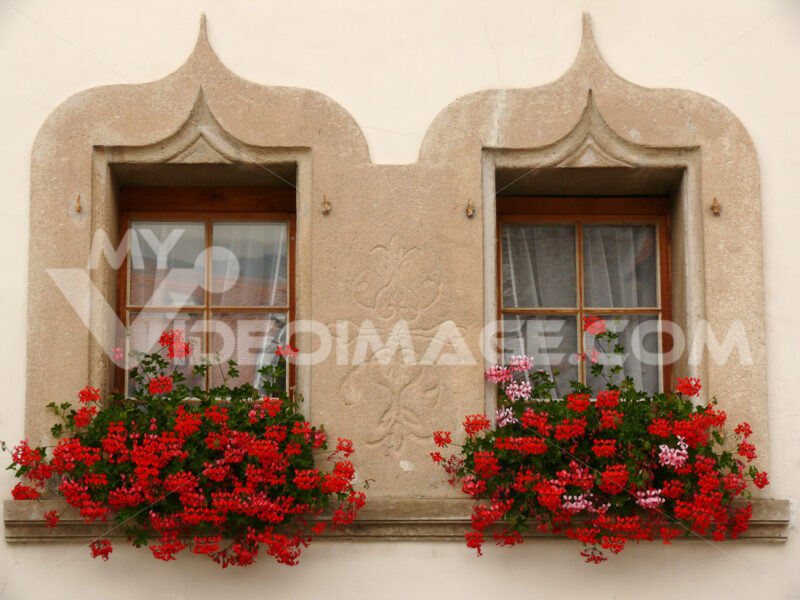 Twin windows with flowers. - MyVideoimage.com