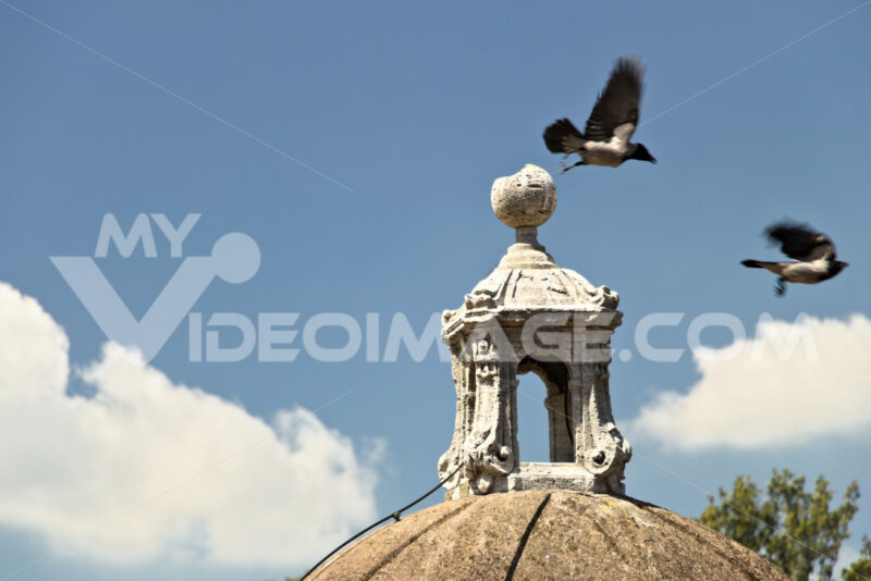 Two magpies on the roof of a castle - MyVideoimage.com