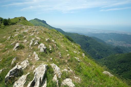 Versilia landscape. Panorama of Versilia with the cities of Camaiore and Viareggio. Stock photos. - MyVideoimage.com | Foto stock & Video footage
