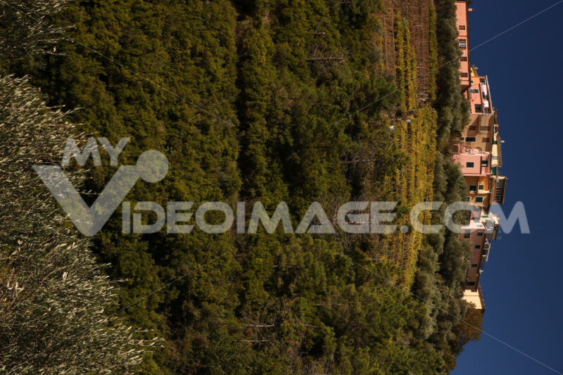 Village of San Bernardino on the hills of the Cinque Terre in Liguria. - MyVideoimage.com