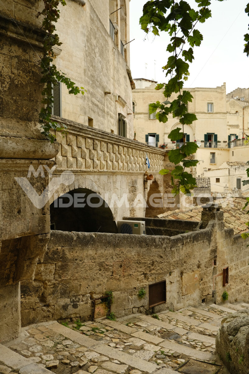 Vine shoot with leaves in a street of the ancient city of Matera. - MyVideoimage.com | Foto stock & Video footage