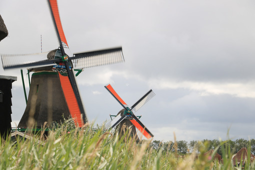 Windmills in Netherlands. Windmills of Zaanse Schans, near Amsterdam. The structures were - MyVideoimage.com | Foto stock & Video footage
