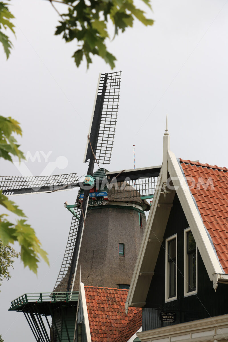 Windmills of Zaanse Schans. Windmills of Zaanse Schans, near Amsterdam. The structures were - MyVideoimage.com | Foto stock & Video footage
