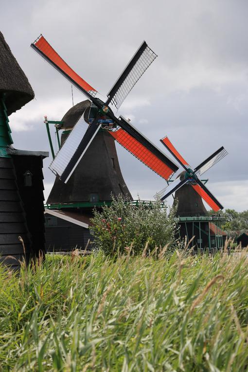Windmills of Zaanse Schans. Windmills of Zaanse Schans, near Amsterdam. The structures were - MyVideoimage.com | Foto stock & Video footage
