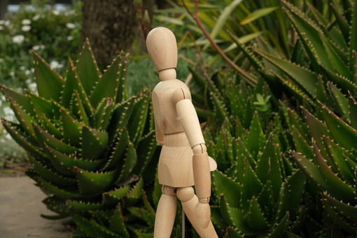 Wooden mannequin in the midst of aloe vera plants. Mediterranean garden with thorny leaves of succulents and model. - MyVideoimage.com