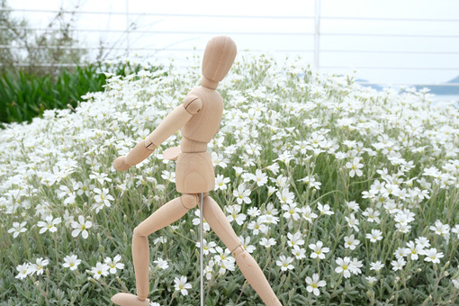 Wooden mannequin in the midst of spring flowers. Garden with cerastium with flowers and rotating model. - MyVideoimage.com