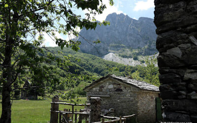 Covid holidays on pilgrimage on the paths of the Cinque Terre and the Apuan Alps